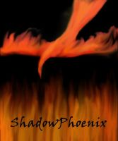 Shadow Phoenix by leto333