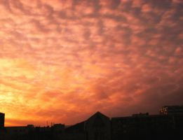 Sunset Over Berlin 61 by ErinM2000