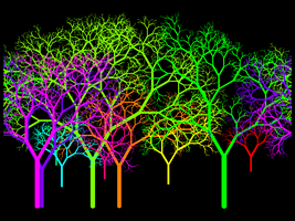 Leafless Colour Wheel Grove II by copperphoenix