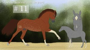 Scandic Warmblood Import 11 *Lottery* by Shangol