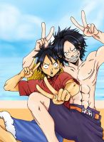One Piece: Ace and Luffy by Dewdrop13