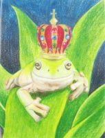 Frog Card by DanielleHope