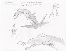 Ikhan Overview by Transapient