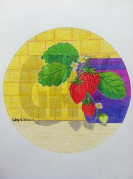 Very Berry Strawberries by Ghiny