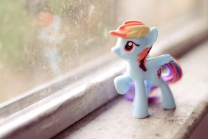 Silly Rainbowdash, you'll never leave! by OftheCrucified