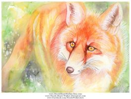 Colorful Red Fox by Nicole-Marie-Walker