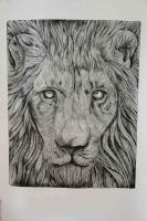 lion / etching by FirebladeMe