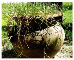 Rustic Flower Pot 1 by Polly-Stock