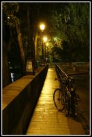 Night riding in Paris by Moitessier