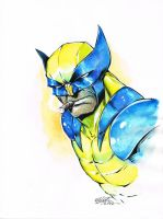 WATERcolor WOLVIE by jerkmonger