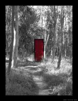 The Red Door by silverspitfire