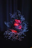 Vibrant Coral Sculpture (b) by Glasmagie