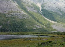 Base of Gros Morne by LucieG-Stock