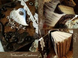 Book of Nocturnal Embrace by luthien27