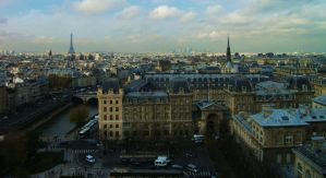 Notre Dame's Majestic View by shepsoverthere
