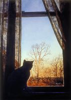 Cat at the Window by hank1