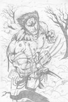 Weapon X by Dannith