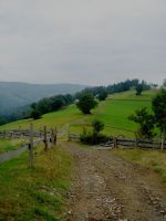 Path to the Green Hill by renny-saoirse