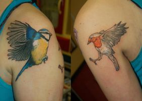 robin and blue tit tattoo by yayzus