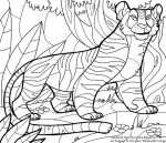 Tiger Coloring Book Page by kiki-doodle