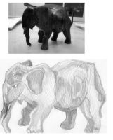 Elephant Contour Drawing by Aihin13