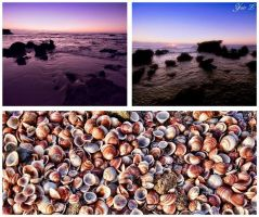 A beach collage by Yair-Leibovich