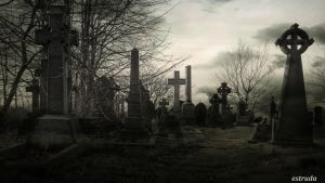 The Otherside Of Life by Estruda