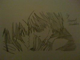 Zero and Yuki from Vampire Knight by captonstu