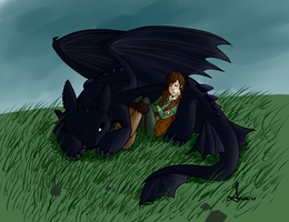 HTTYD: Boy and His Dragon by Sesshomaru-Sara