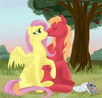 Big Macintosh and Fluttershy. by L-jare