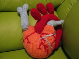 Knitted Heart by AnOwlatNoon