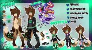 Fursona Ref. Sheet 2014 by TheDaisyQueen