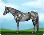 Grayscale Horse [50 Points] by Tesurii