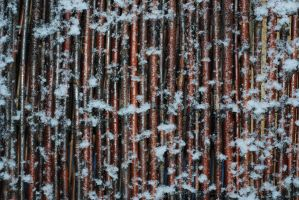 Frozen sticks by Quinnphotostock