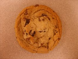 Chocolate Chip Cookie by BakeryGirl-stock