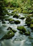 Stoney creek by Lucie-Lilly
