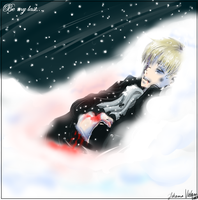 APH : Be my last HRE by Naoot