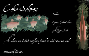 Coho Salmon by WolfLuna65