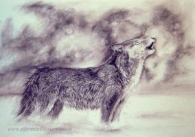 Wolf song by Alfa-Renard