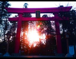 torii sunset by stillshadow