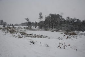 snowy deer park lake 2010 by loobyloukitty