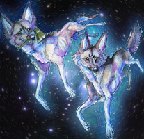 wait till the star dogs get my picto-hologram by destroyallantz