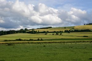 Meadow Pasture Landscape 4 by LuDa-Stock