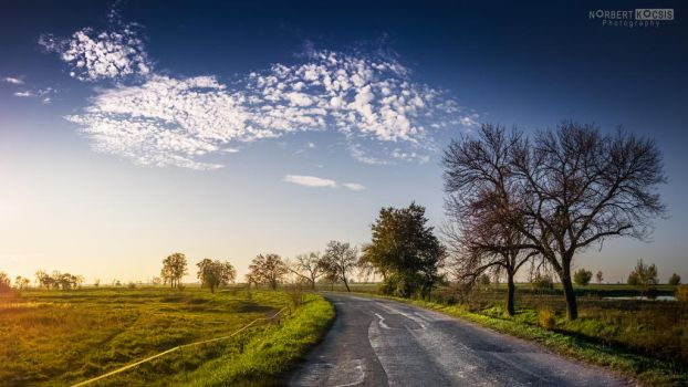 Road through the pastures by NorbertKocsis