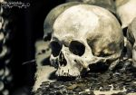 Skull And Coins by Wintertale-eu