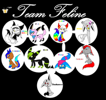 .:Team Feline:. by LunaEclipsa