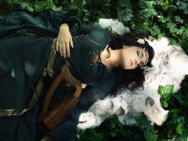 Celtic dream by Costurero-Real
