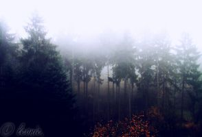 When did I arrive in Silent Hill? by LeonieLionheart