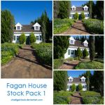 Fagan House stock pack 1 by charligal-stock