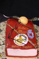 Harry Potter Birthday Cake by Timtendo
